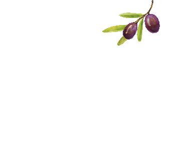 Silgueiro Logo